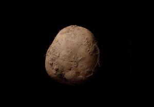 Знімок картоплі