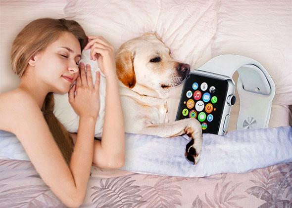 150415_fut_applewatchdog_jpg_crop_promo-mediumlarge.jpg (152. Kb)