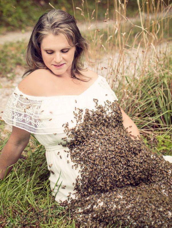 621cca0-pregnancy-bee-1.jpg (124.13 Kb)