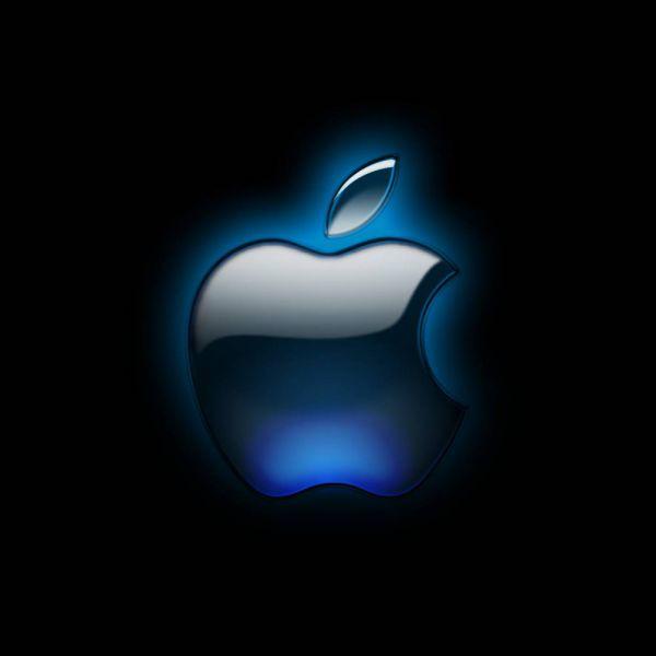 92961-apple-apple-logo.png (13.07 Kb)