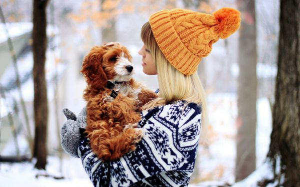 9668_www_getbg_net______girl_in_a_red_sweater_with_a_dog_075660_.jpg (47.3 Kb)