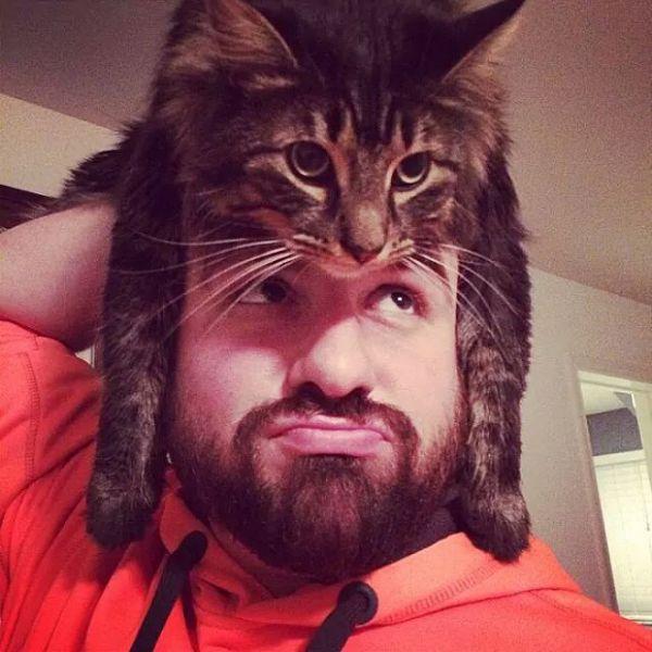 cat-hat11.jpg (.92 Kb)