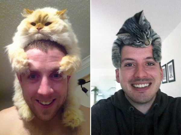 cat-hat2.jpg (38.78 Kb)