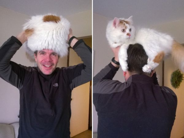 cat-hat6.jpg (29.7 Kb)