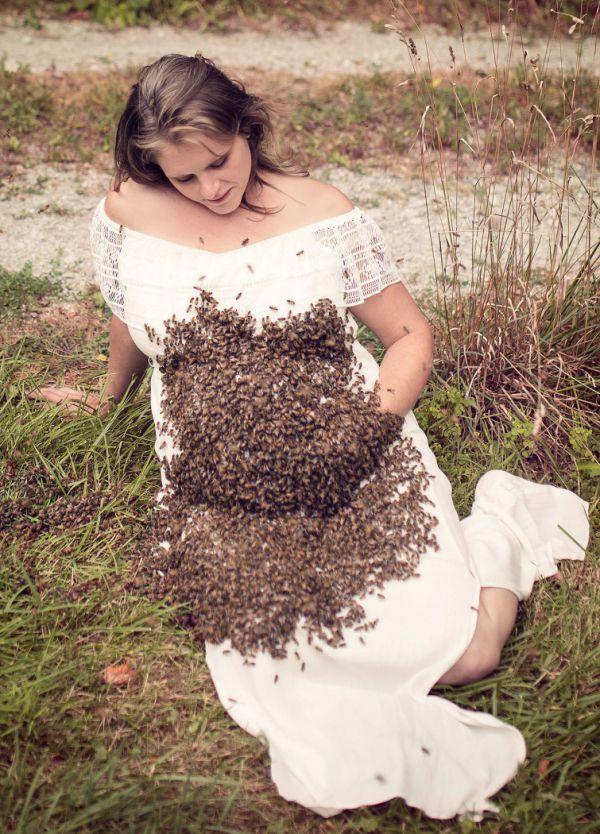 ef38220-pregnancy-bee-4.jpg (128.54 Kb)