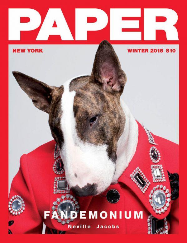 paper-11.jpg (73.96 Kb)