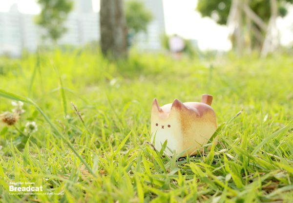 warmly-baked-the-breadcat-fotonew5.jpg (41.79 Kb)