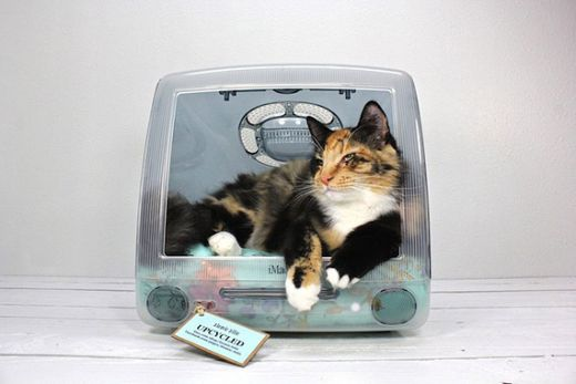 think-different-imac-upcycled-pet-beds-by-atomic-attic-2.jpg (24.44 Kb)