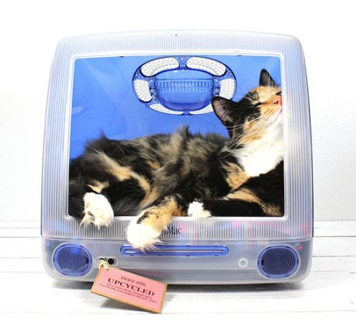 think-different-imac-upcycled-pet-beds-by-atomic-attic-9.jpg (38.14 Kb)