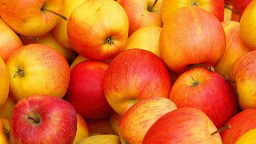 1600x1200-apple-fruit-wallpaper-vfvgpo.jpg (40.99 Kb)