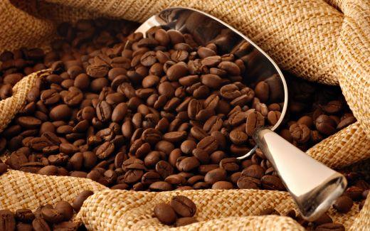 coffee-beans.jpg (.55 Kb)