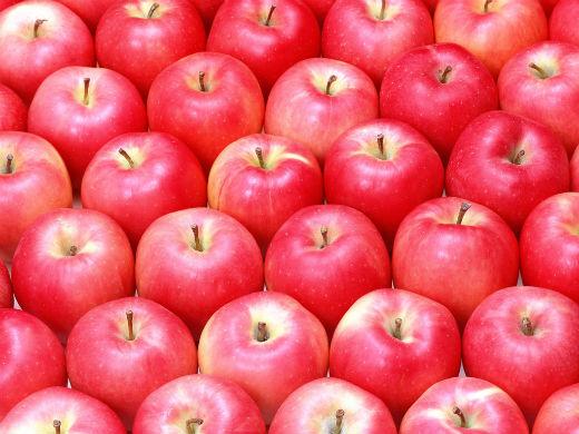 fruit_apple_apple-tree_wallpaper_vol_014_sn158.jpg (56.99 Kb)