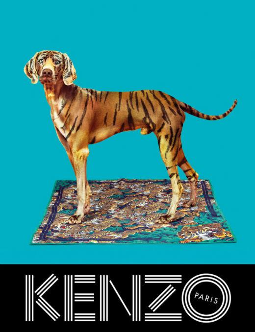 kenzo-fall-campaign3.jpg (67.71 Kb)